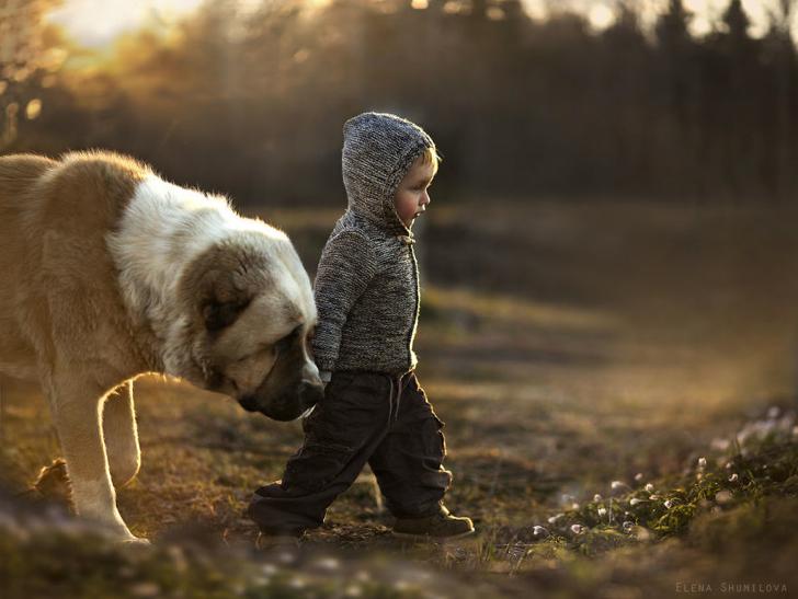 Çocuk Köpek Fotoğraf 3