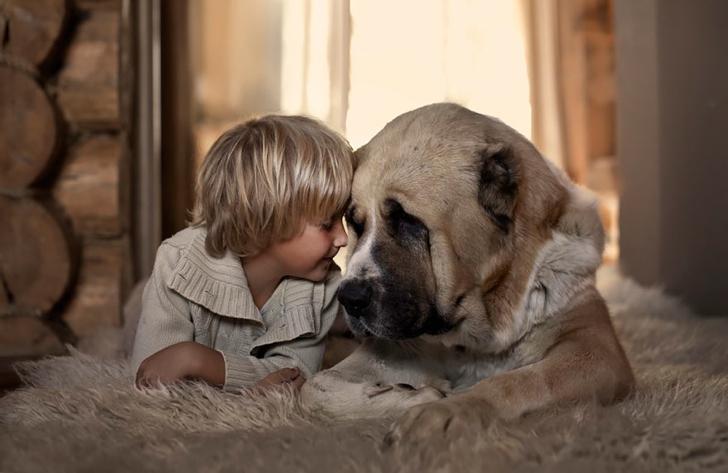 Çocuk Köpek Fotoğraf