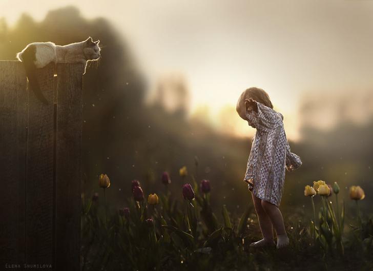 Çocuk Kedi çiçekler Fotoğraf