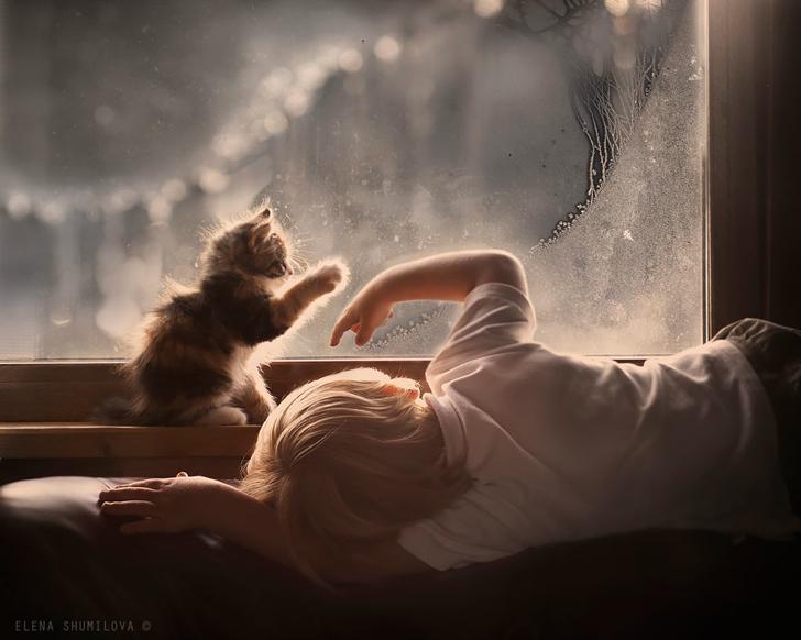 Çocuk Kedi Fotoğraf