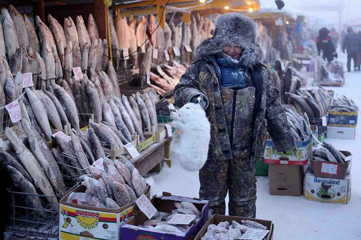 soğukta satılan etler