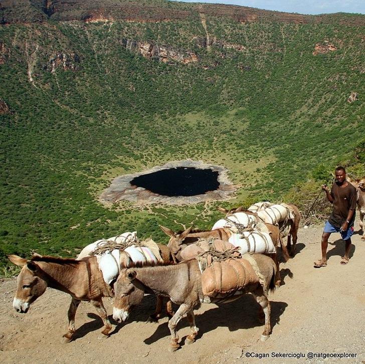 Etiyopya Tuz Toplayıcılar