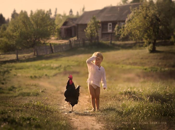 Horoz Çocuk Çiftlik Fotoğraf