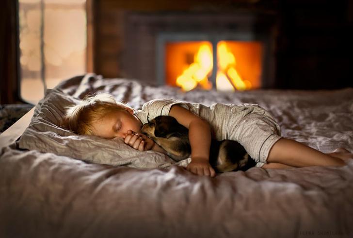 Köpek Şömine Çocuk Fotoğraf