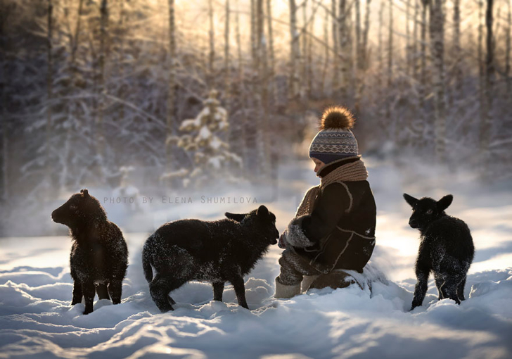 Kuzular Çocuk Kar Fotoğraf