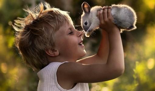 çocuk tavşan fotoğraf
