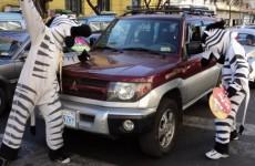 trafik zebralari