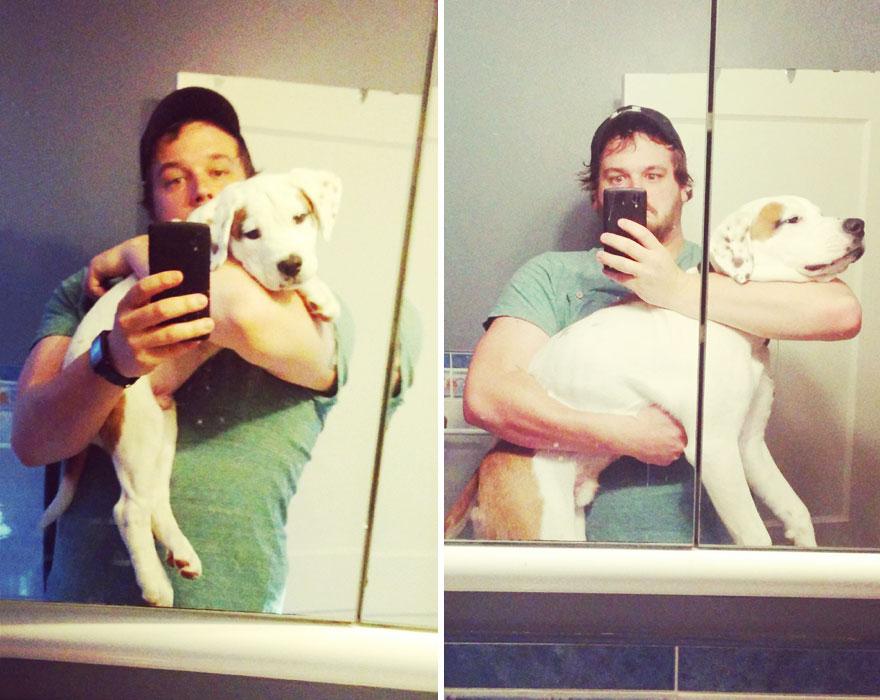 büyüyen köpek ve sahibi