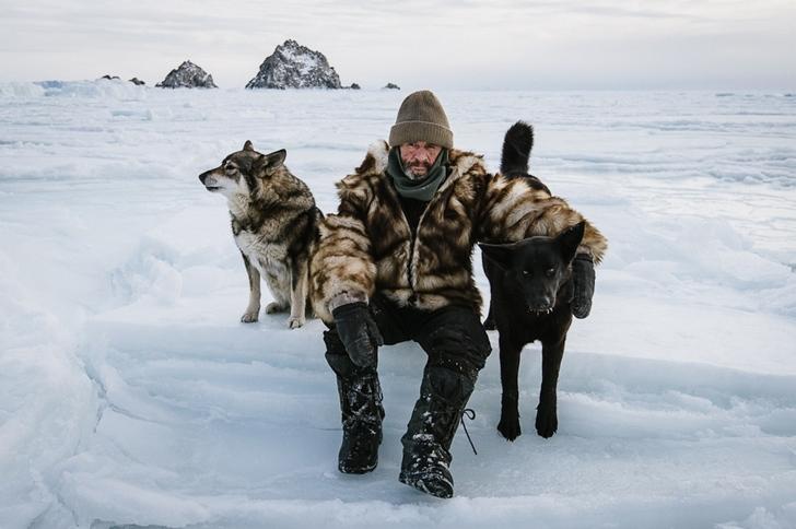 adam köpek fotoğrafları kutuplar tundra