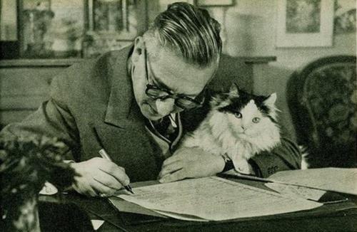 jean paul sartre kedi