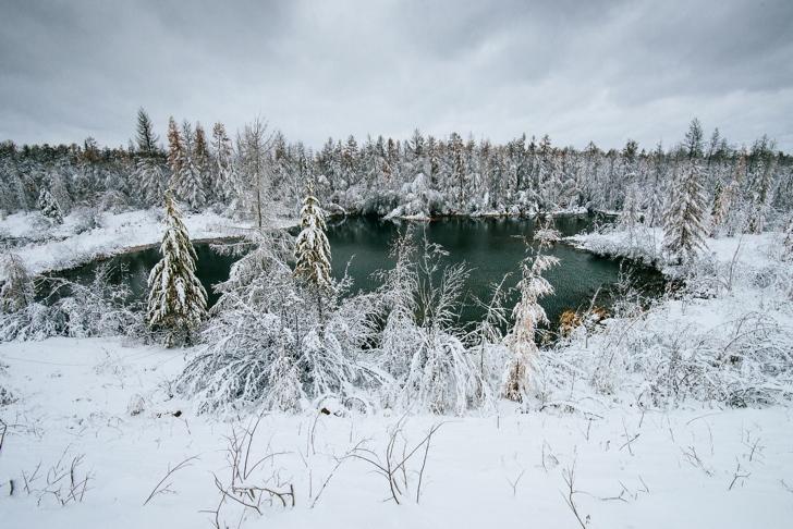 kutuplar tundra doğa fotoğrafları