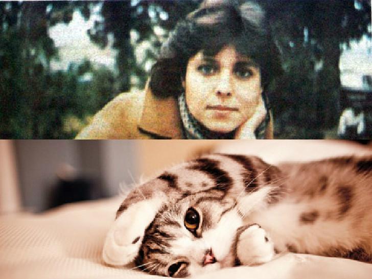 nilgun marmara kedi