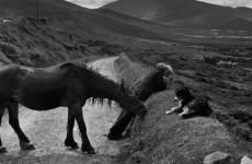 henri cartier bresson, irlanda, 1952