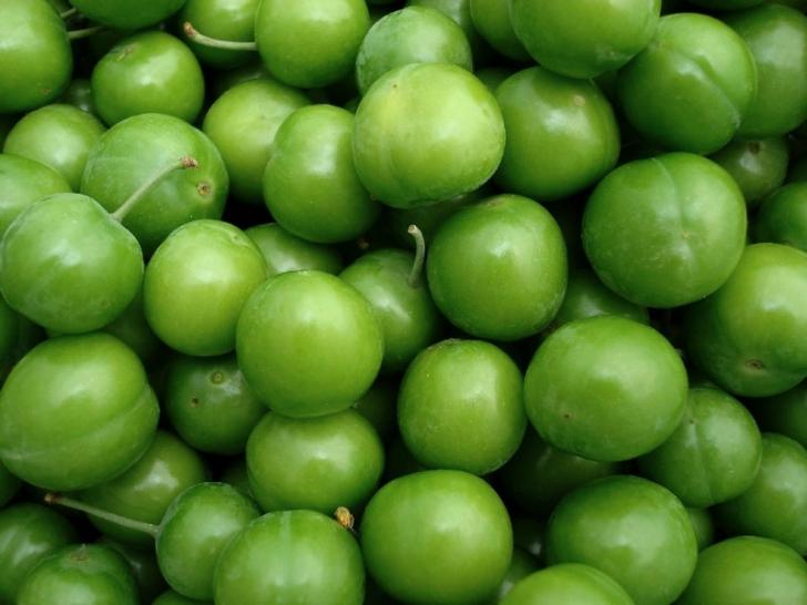yeşil rengin anlamı