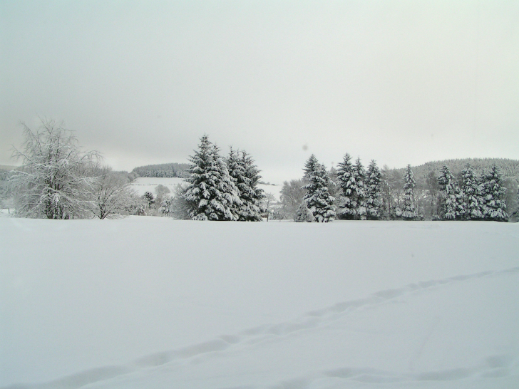 beyaz karlı bir ova