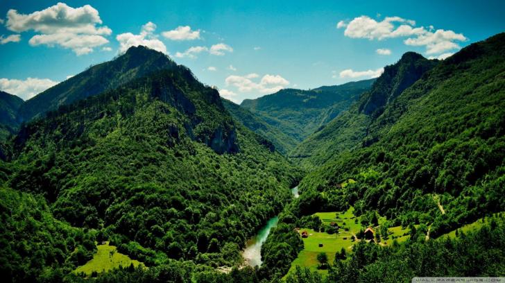yeşil dağ manzarası