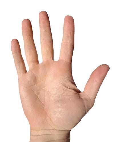 parmaklar altın oran