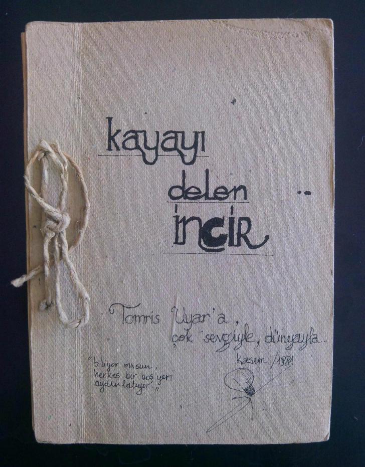 turgut uyar, kayayı delen incir, okunması gereken şiir kitapları