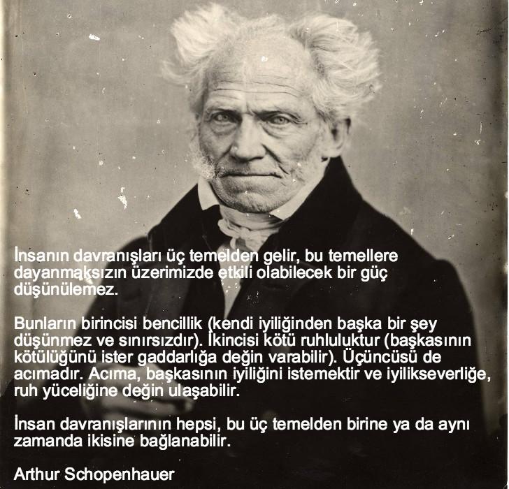 arthur schopenhauer, düşündüren sözler, düşündüren özlü sözler, düşündüren güzel sözler, anlamlı sözler, güzel özlü sözler, güzel sözler