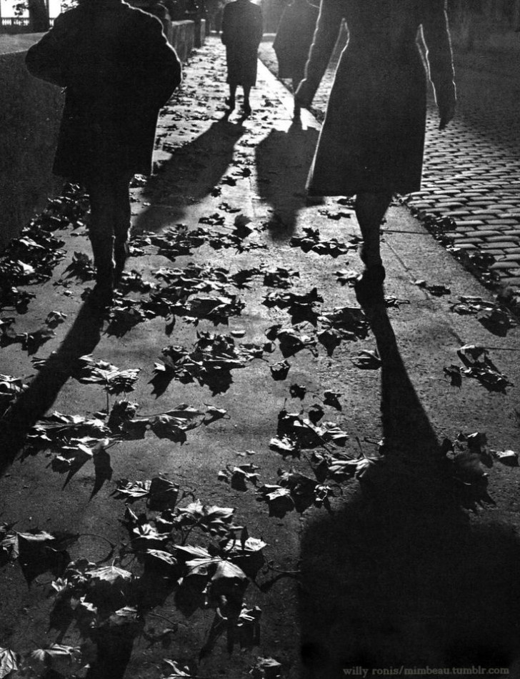 Willy Ronis, Sidewalk in autumn Paris, 1950