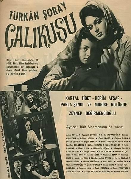 calikusu