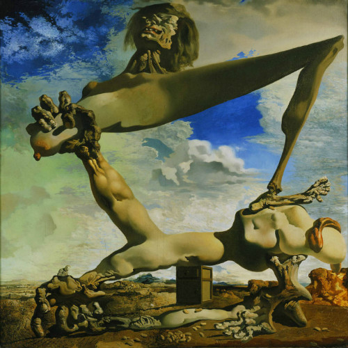 soft construction with boiled beans, salvador dali