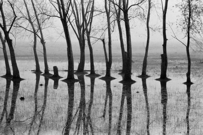 magnum ajansı fotoğrafçıları, şiir, gençlik şiirleri