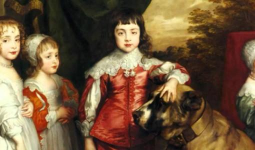 köpek tabloları