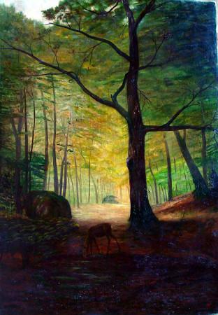 orman ve geyik şeker ahmed paşa