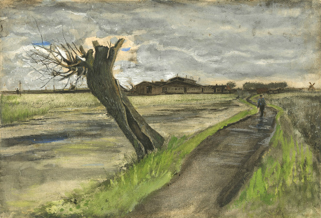 van gogh - pollard willow