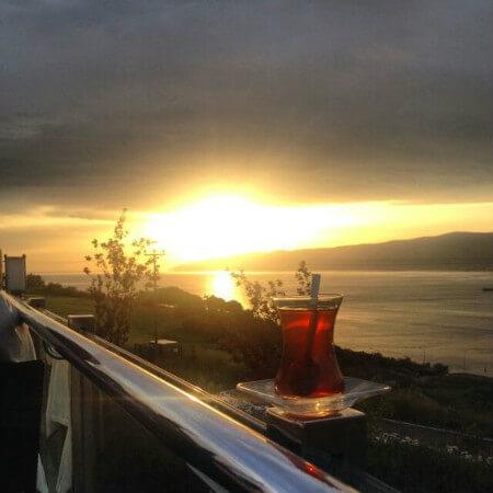 türk edebiyatında çay