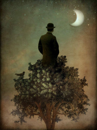 Catrin Welz-Stein, Man in Tree