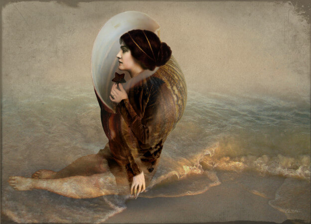 Catrin Welz-Stein, The Collector