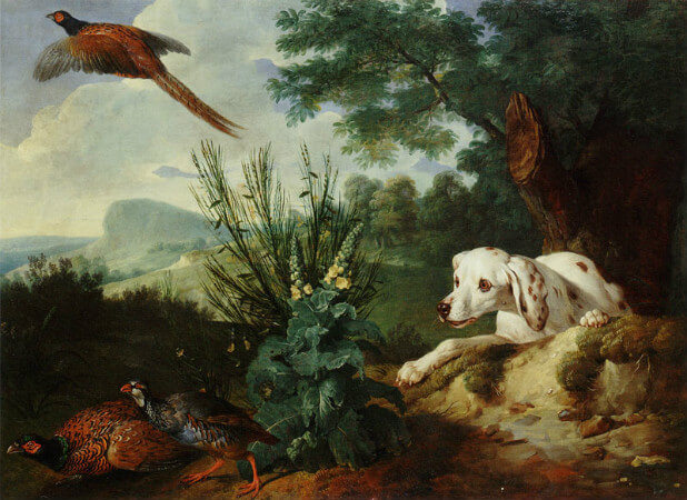 Alexandre Francois Desportes, Pheasant And Quail Surprised By A Hunting Dog
