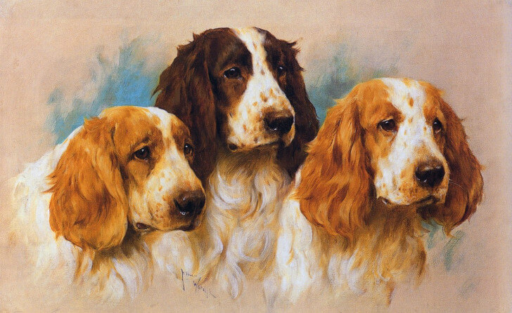 Arthur Wardle, Three Springer Heads