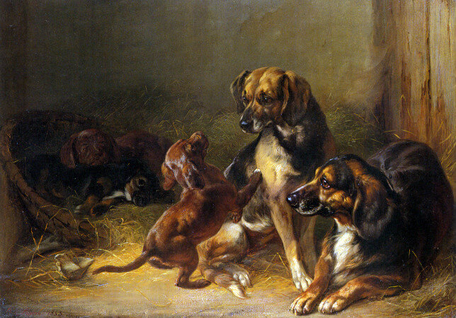 Benno Adam, Dogs and Whelps, 1853