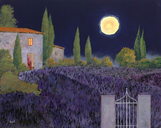 Guido Borelli, Lavanda Di Notte