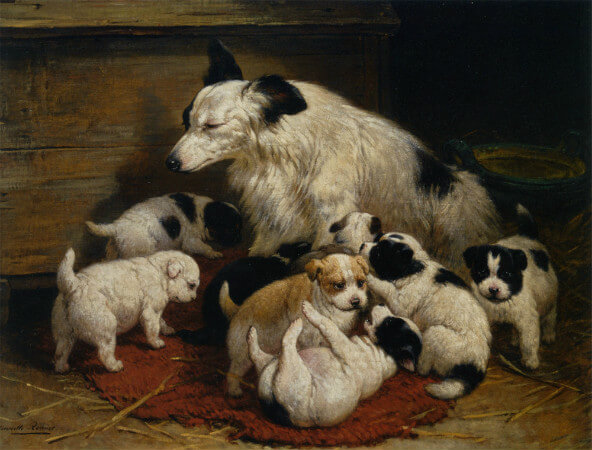 Henriette Ronner Knip, A Dog and Her Puppies