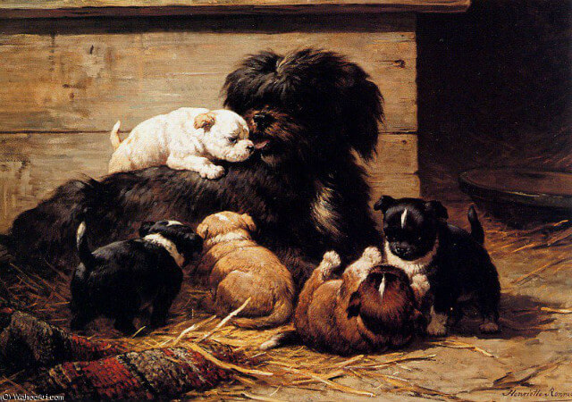 Henriette Ronner-Knip, Dog With Puppies Sun
