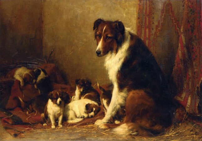 Otto Eerelman, A Collie and Her Puppies