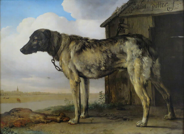 Paulus Potter, The Wolfhound