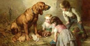 hayvanseverlerin seveceği kitaplar