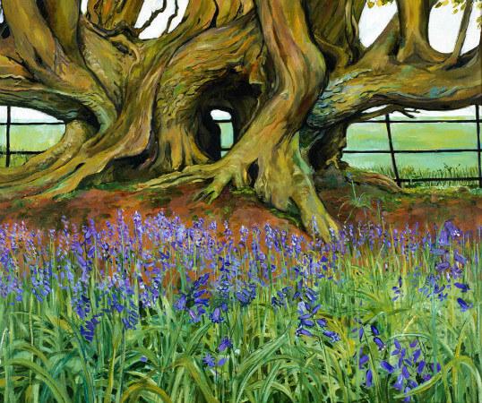 Christiane Kubrick, Hornbeam in Bluebell Wood