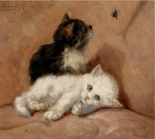 Henriette Ronner-Knip, Two Kittens And A Fly