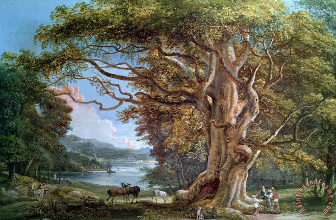 Paul Sandby, An Ancient Beech Tree, 1794