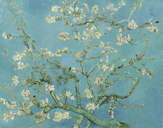 van gogh, almond branches in bloom, st remy, 1890