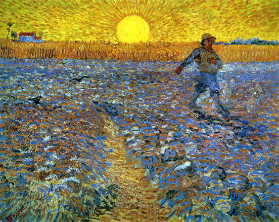 van gogh, sower with the setting son, 1888
