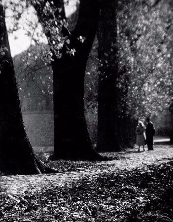 Josef Sudek, Couple and Trees, 1960'lar