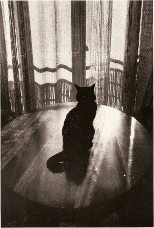 Edouard Boubat, Paris, 1986