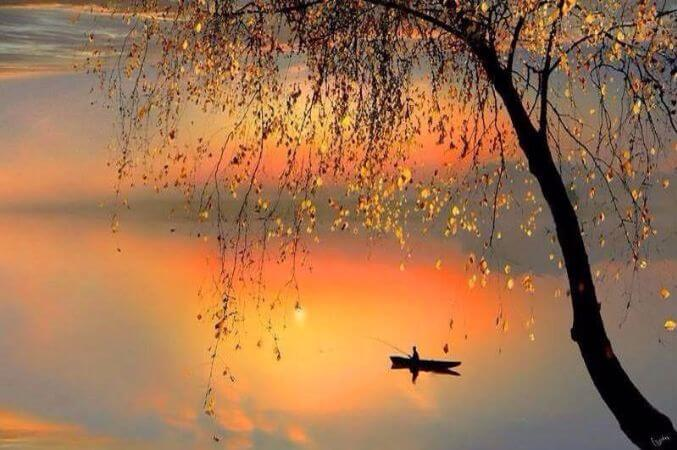 igor Zenin, Fishing Sunset